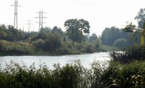 Озеро Летчицкое. По левому берегу