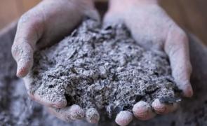 В Калининградской области удовлетворены исковые требования военного прокурора об устранении нарушений природоохранного законодательства